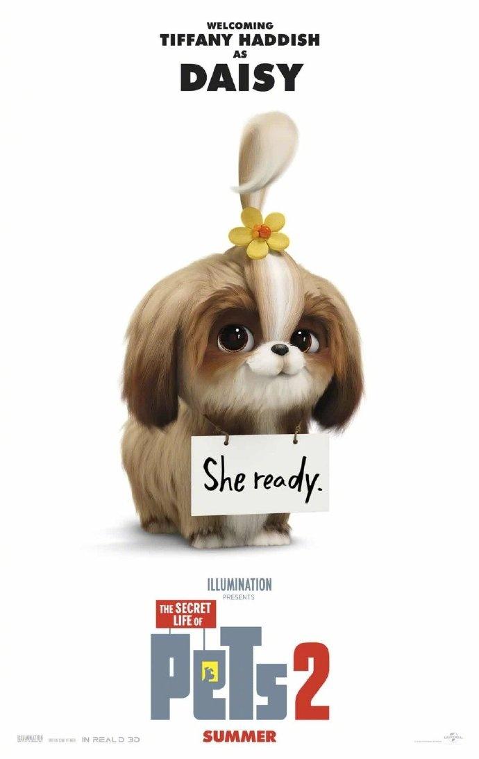 《爱宠大机密2》曝海报预告 新狗狗亮相发型可爱图片