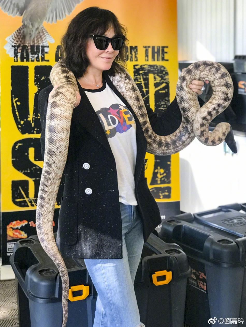刘嘉玲澳洲度假与动物亲密同框 手举鳄鱼肩缠蟒蛇超大胆
