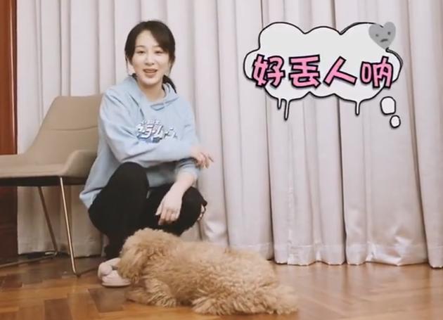 杨紫与爱宠互动 狗狗不配合营业搞笑欢脱