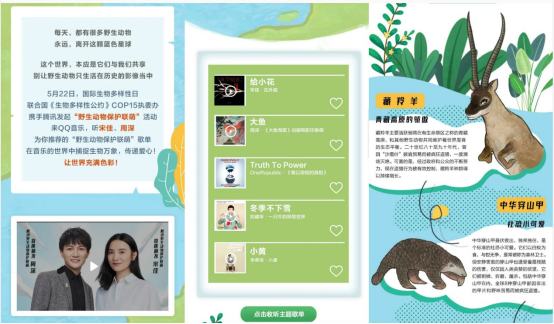 """音乐 宋佳、周深邀你加入""""野生动物保护联萌"""",来QQ音乐为野生动物发声"""